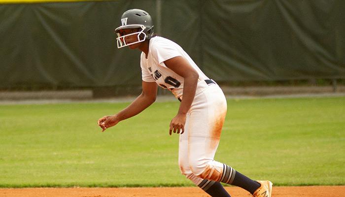 2020 DTN All-County Softball Team